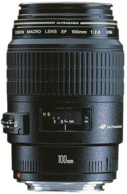 Canon EF 100 mm f/2.8 Macro USM Lens(Black, Macro Lens)