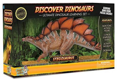 Discover with Dr. Cool Stegosaurus Includes Real Dinosaur Bone Fossil