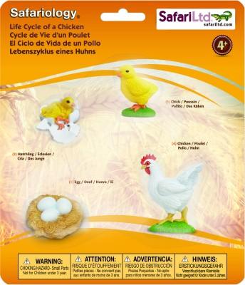 Safari Ltd So Life Cycle of a Chicken