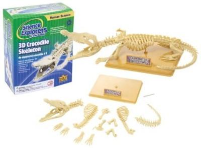 Wild Republic Science Kit Crocodile Skeleton