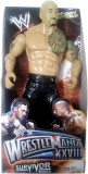 Turban Toys WWE Champion and Hollywood A...