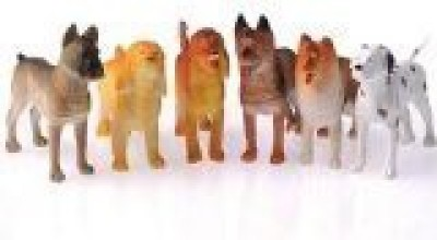 US Toy Dogs (1 Dozen)4