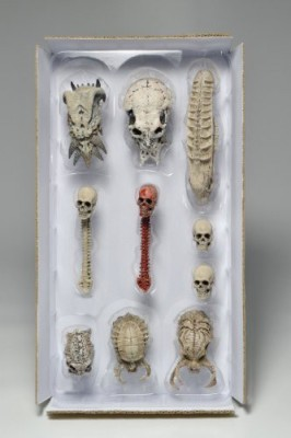 NECA Predators Limited Edition Trophy Skulls Pack Accessory Pack