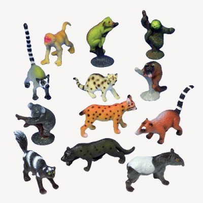 US Toy Assorted Rain Forest Animal(Lot Of 12)
