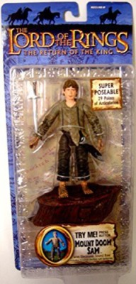 The Lord Of The Rings Return Of The King Collectors Series