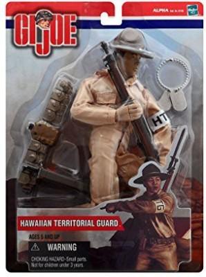 G I Joe Hawaiian Territorial Guard