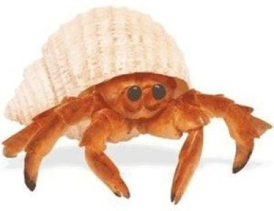 Safari Ltd. Incredible Creatures Hermit Crab