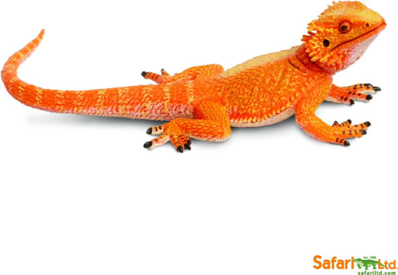 Safari Ltd Bearded Dragon(Multicolor)