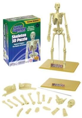 Wild Republic Science Kit Human Skeleton