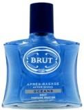 Brut Oceans (100 ml)