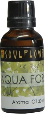 Soulflower Aqua Forest Home Liquid Air Freshener
