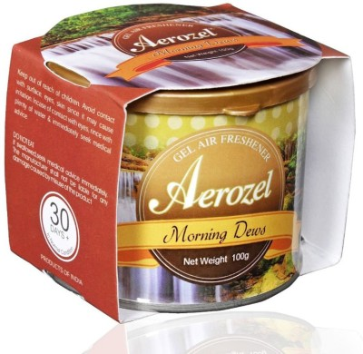 Aerozel Morning Dew Car Perfume Gel