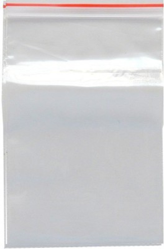 ELPH Resealable Plastic Air Tight Pouch(Clear Pack of 300)