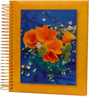 Natraj Autostick 30 Sheet 11 X 13 inch Album