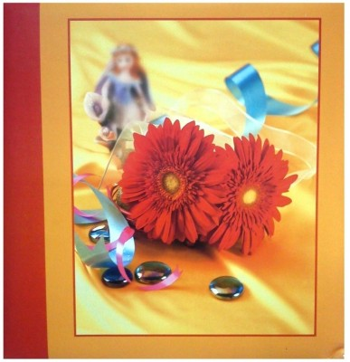 Natraj 200 Pocket - Size 5 X 7 inch Album