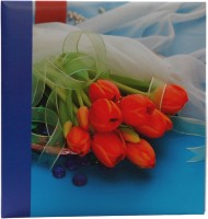 Natraj 200 Pocket 5 X 7 inch Album(Photo Size Supported: 5 X 7 inch)