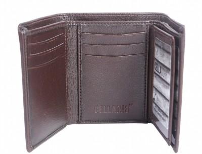 Celladorr Men Brown Artificial Leather Wallet
