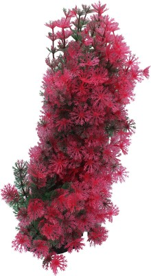 Jainsons Fish Tank Decorative Items Laterite Planted Substrate(Multicolor, 0.25 KG)