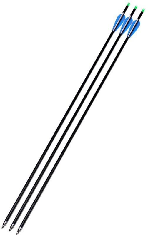 Victory Carbon fibre Arrow(31)