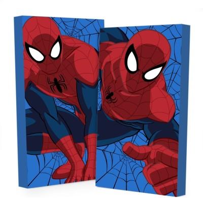 Marvel Spiderman Glow in The Dark Wall Art