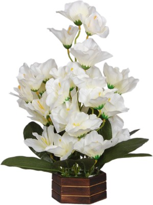 Loxia 4011A White Wild Flower Artificial Flower  with Pot