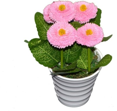 Flowers Forever Pink Elegant Pink Daisy Artificial Flower  with Pot(9 inch, Pack of 1)