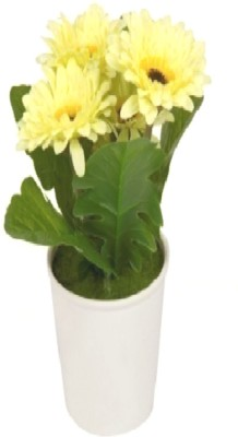 Flowers Forever Yellow Gerbera Artificial Flower  with Pot(Pack of 1)