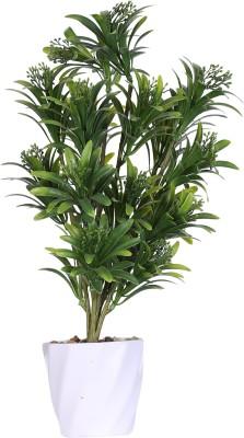 Evergreen Green Assorted Artificial Flower  with Pot