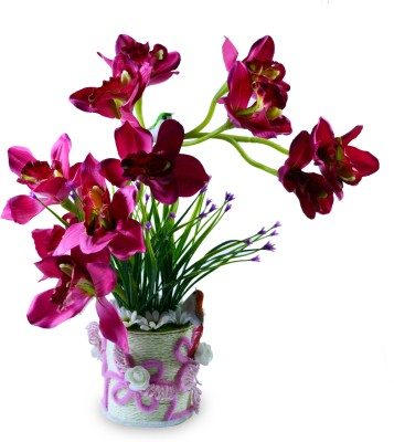 Magical Petals Multicolor Orchids Artificial Flower  with Pot