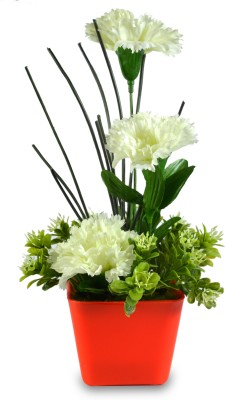 Sadhna Creations White Carnations Artificial Flower  with Pot