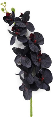 Gifts By Meeta Black Assorted Artificial Flower