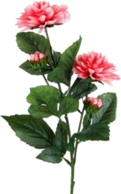 Flowers Forever 4 Heads Dahlia Pink Assorted Artificial Flower(Pack of 1)