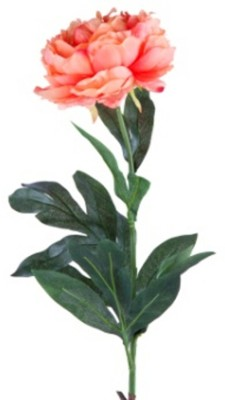 Flowers Forever Single Orange Peony Artificial Flower(Pack of 1)