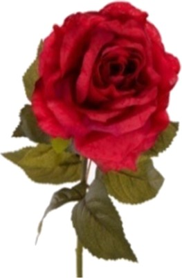 Flowers Forever Classical Large Dyce Red Rose Artificial Flower(Pack of 1)