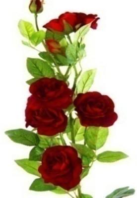 Flowers Forever 7 Heads Velvet Wild Red Rose Artificial Flower(Pack of 1)
