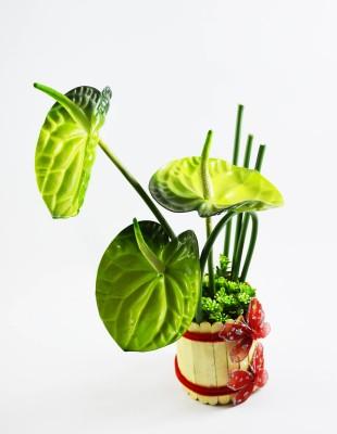 Magical Petals Green Assorted Artificial Flower  with Pot