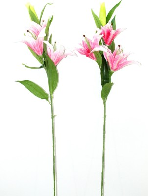 Bengal Blooms Oriental Pink Lily Artificial Flower(35 inch, Pack of 2)
