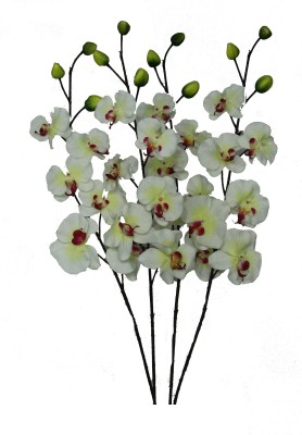 Pollination Orchid White Assorted Artificial Flower
