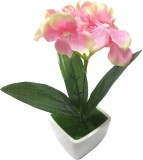 Flowers Forever Artificial flower Multic...