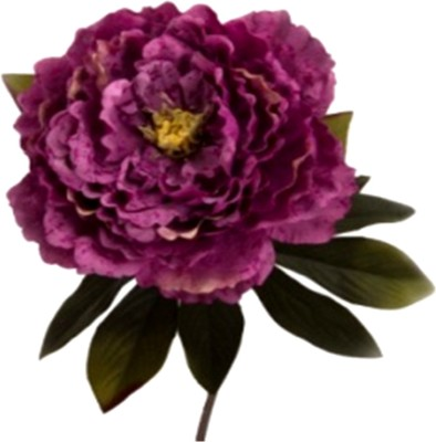 Flowers Forever Single Head Crack Pink Peony Artificial Flower(Pack of 1)