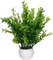 Loxia Green Wild Flower Artificial Flower  with Pot(8.8 inch, Pack of 1)