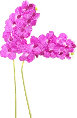 Bengal Blooms Venda Pink Orchids Artificial Flower(25 inch, Pack of 2)