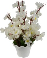 The Fancy Mart FP-0090-866 White Wild Flower Artificial Flower  with Pot(12 inch, Pack of 1)