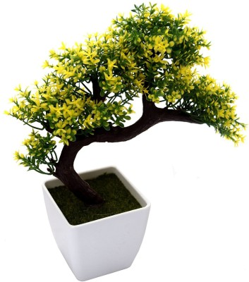 HYPERBOLE Bonsai Artificial Plant  with Pot