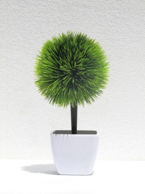 Miracle Retail Artificial Plant  with Pot