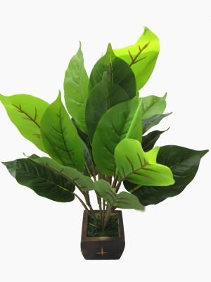 A Bonsai Artificial Plant  with Pot