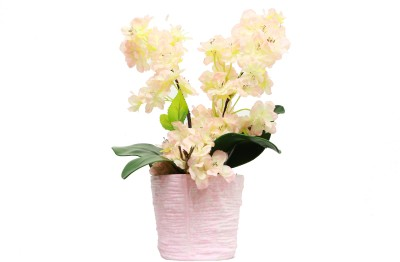 Bengal Blooms New Flowers Artificial Plant with Pot(30 cm, Multicolor)