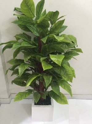 The Greenhouse Artificial Plant  with Po...