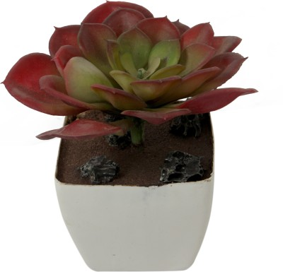 The Greenhouse Artificial Plant  with Pot
