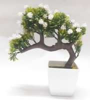 Icable Bonsai Wild Artificial Plant  with Pot(24 cm, White)